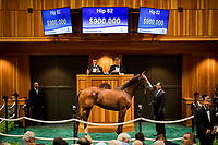 SARATOGA SPRINGS, NY- AUGUST 06: Hip #82 by Into Mischief, out of Reve D'Amour, a filly bred in Kentucky and consigned by Denali Stud (Craig & Holly Bandoroff) Agent V sells for $950,000 on Day 1 of the Fasig Tipton Saratoga Select Yearling Sale at the Humphrey S. Finney Sales Pavilion on August 6, 2018 in Saratoga Springs, New York. (Photo by Alex Evers/Eclipse Sportswire)