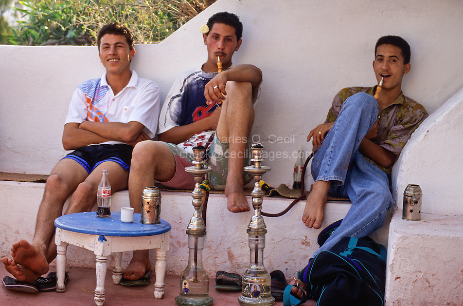 Tunisia, Sidi Bou Said.  Young Tunisian Men Smoking a Sheesha at the Cafe Sidi Sha'ban.