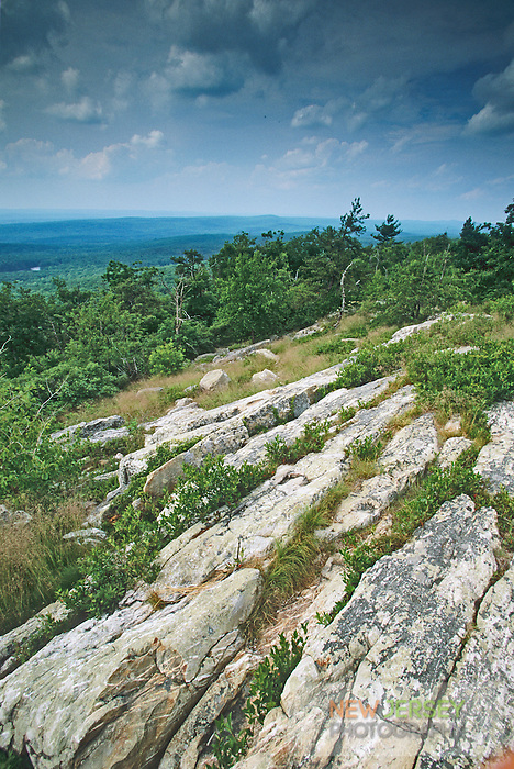 Limestone Plateau, over looking the Delaware Valley, Stokes State Forest, New Jersey