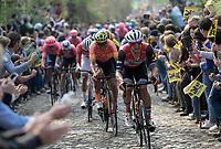 up the Taaienberg<br /> <br /> 103rd Ronde van Vlaanderen 2019<br /> One day race from Antwerp to Oudenaarde (BEL/270km)<br /> <br /> ©kramon