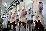 URUGUAY Schlachthof der MARFRIG Gruppe, ein brasilanisches Unternehmen, in Tacuarembo, Herstellung von Rindfleisch Steakfleisch Hamburger / URUGUAY slaughterhouse of MAFRIG Group in Tacuarembo , meat steak and hamburger production for export