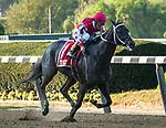 09-28-19 Jockey Club Gold Cup Undercard & Scene Belmont