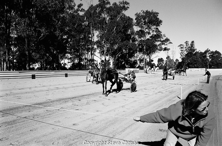 Fairfield Paceway is a 800m other horse track in Prairiewood, New South Wales, Australia that features harness racing. Photo:(Steve Christo)