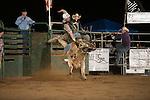 SEBRA - Gordonsville, VA - 9.13.2014 - Bulls & Action