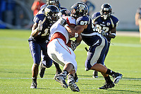 27 November 2010:  FIU defensive end Tourek Williams (97) and cornerback Ashlyn Parker (11) stop Arkansas State running back Jermaine Robertson (43) for a loss in the first quarter as the FIU Golden Panthers defeated the Arkansas State Red Wolves, 31-24, at FIU Stadium in Miami, Florida.