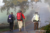 fecha:05-11-2010 Un peregrino despues de pasar Ligonde, antes de Palas de Rei, Lugo. Foto:Pedro Agrelo