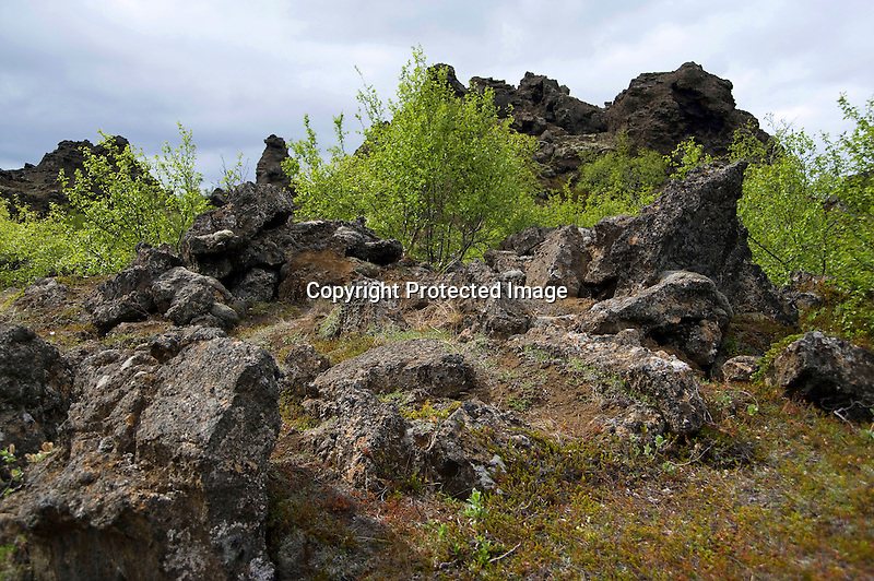 Lava Formations at Dimmuborgir Lava Field near Lake Myvatn in North-East Iceland