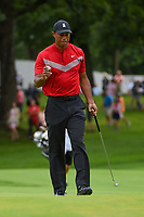 Tiger Woods (USA) after sinking his putt on 1 during Rd4 of the 2019 BMW Championship, Medinah Golf Club, Chicago, Illinois, USA. 8/18/2019.<br /> Picture Ken Murray / Golffile.ie<br /> <br /> All photo usage must carry mandatory copyright credit (© Golffile | Ken Murray)