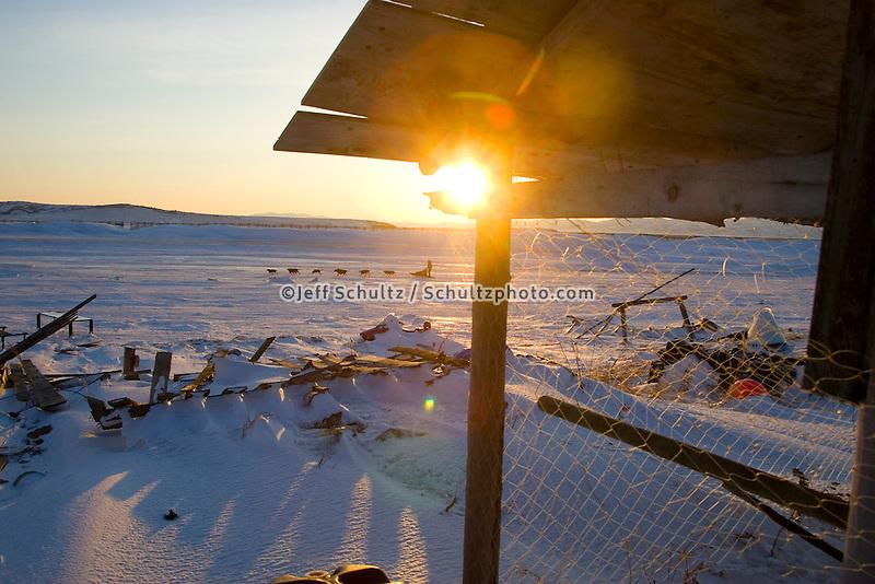 Viewed through fish drying rack & net Bill Pinkham leaves Unalakleet @ sunrise 2006 Iditarod Western AK