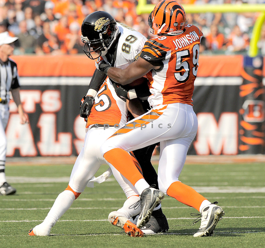 MARCEDES LEWIS, of the Jacksonville Jaguars, in action against the Cincinnati Bengals during the Bengals game in Cincinnati, OH on Novmeber 12, 2008. ..Bengals win 21-19