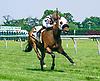Threeohtwocassie winning at Delaware Park on 6/13/17