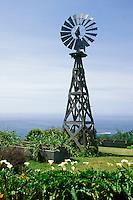 California, Mendocino County, Windmill, Navarro Bluff Road