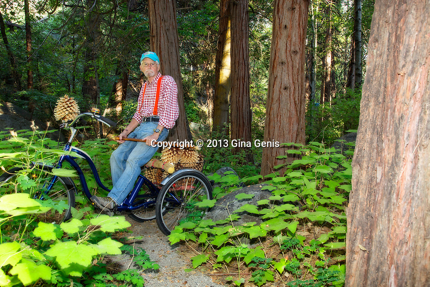 """Doc"" Joseph Bernier on his tricycle among the ferns at Strawberry Creek behind the Funky Bazaar."