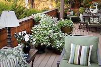 Group of containers on deck defining small space urban townhome patio garden