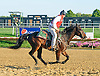 Lance & Colby at Delaware Park on 10/7/15