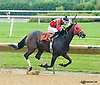 Angelena Storm winning at Delaware Park on 6/15/15