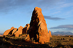 March 2009:  Springtime in the Utah desert, Moab, UT.