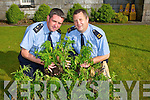 Garda Sean Regan and Denis O'Brien with some of the drugs that was seized in Kilgarvan on Tuesday