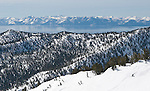 Roughly 5000 vertical feet of untracked snow on the far eastern part of the Davis Creek park run off of Mt. Rose Ski Tahoe.
