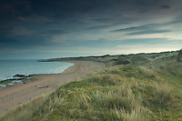 Beach near Gullane Bents, Gullane, East Lothian
