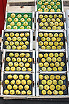 Overview of boxes of fresh figs in produce market display.