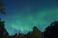 A view of the Northern Lights from my backyard. Michigan's Upper Peninsula