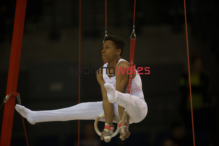 British Gymnastics Championships 2017<br /> The Liverpool Echo Arena<br /> Emil Barber Swansea Gymnastics Club<br /> 25.03.17<br /> ©Steve Pope - Sportingwales