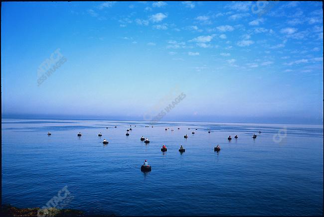 Fishermen float on inner tubes at dawn. Havana Bay, Cuba, March 1994