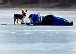 Gizmo checks on Frankie Vono, 10, of Ellington, who fell on the ice while hitting a ball with a hockey stick to Brian Landry, Saturday, January 27, 2018, in Ellington. (Jim Michaud / Journal Inquirer)