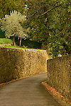 A view of a walled  medieval road in San Domenico Florence.