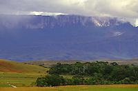 Monte RoraimaParque Nacional CanaimaSanta Helena - Gran Sabana - Venezuela<br /> Foto Marcello Lourenço