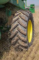 Combine wheel - Lincolnshire, Augsust