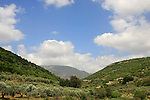 Israel, Lower Galilee, Wadi Tzalmon