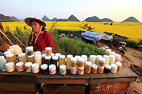 Commercial Beekeeping China