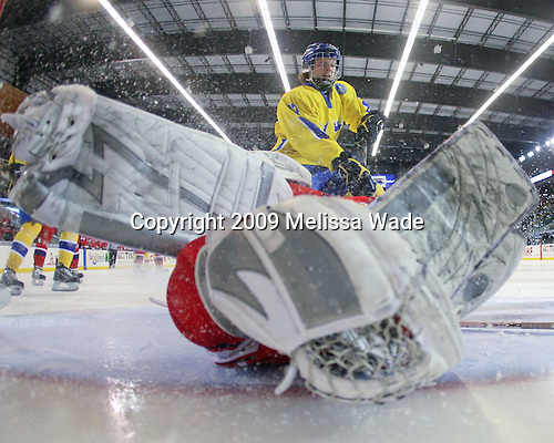 Filip Novotny (Czech Republic - 1), Calle Klingberg (Sweden - 17) - Sweden defeated the Czech Republic 4-2 at the Urban Plains Center in Fargo, North Dakota, on Saturday, April 18, 2009, in their final match of the 2009 World Under 18 Championship.