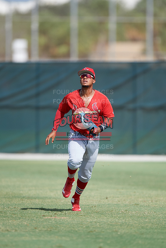 GCL Cardinals right fielder Brian Sanchez (16) tracks a fly ball during a game against the GCL Mets on July 23, 2017 at Roger Dean Stadium Complex in Jupiter, Florida.  GCL Cardinals defeated the GCL Mets 5-3.  (Mike Janes/Four Seam Images)