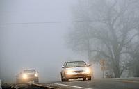 NWA Democrat-Gazette/FLIP PUTTHOFF<br />SLOW GOING<br />Motorists drive through fog Tuesday morning Jan. 9 2018 along Arkansas 12 in the Prairie Creek area. Fog was heavy on Tuesday east or Rogers near Beaver Lake