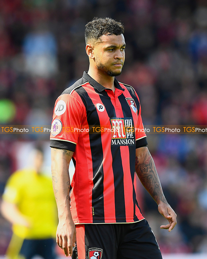 Joshua King of AFC Bournemouth during AFC Bournemouth vs Middlesbrough, Premier League Football at the Vitality Stadium on 22nd April 2017