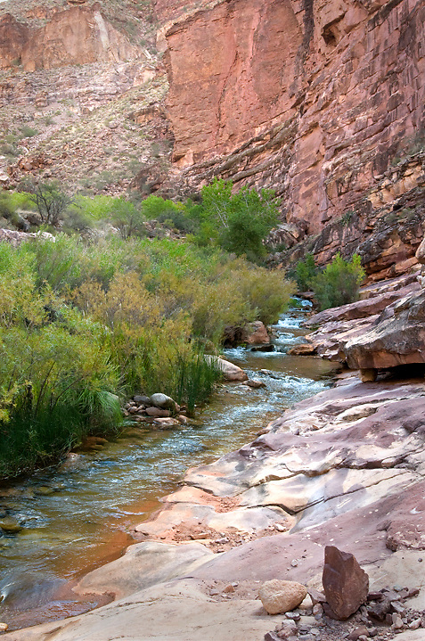 Shinumo Creek is most easily reached by river runners, but the North Bass Trail also follows this creek for a few miles.<br />