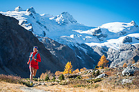 Trail running in the Rosegtal during the fall color period, above Pontresina, Switzerland.