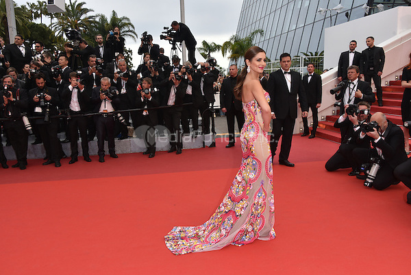Cheryl Fernandez Versini arrives at 'Ma Loute' screening at 69th International Cannes Film Festival, France<br /> May 2010<br /> CAP/PL<br /> &copy;Phil Loftus/Capital Pictures /MediaPunch ***NORTH AND SOUTH AMERICA ONLY***