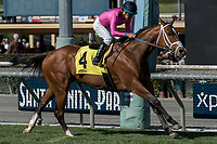 ARCADIA, CA  FEBRUARY 24: #4 Conquest Tsunami, a survivor of the San Luis Rey fire, ridden by Victor Espinoza, wins the Daytona Stakes (Grade lll) on February 24, 2018, at Santa Anita Park in Arcadia, CA. (Photo by Casey Phillips/ Eclipse Sportswire/ Getty Images)