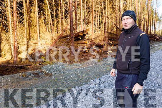 Ger Mulrooney of Greenbelt at the forest in Farranfore on Monday