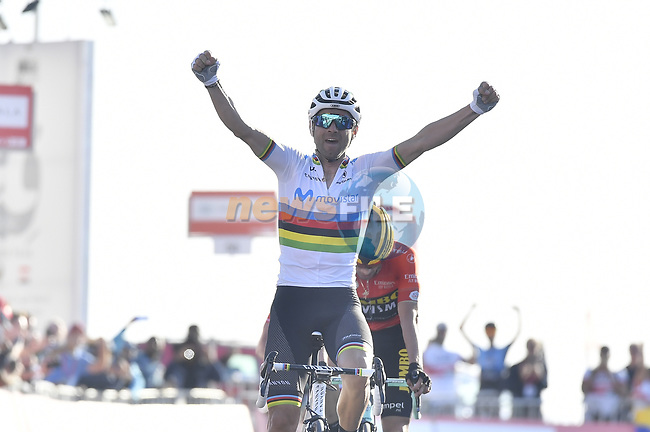World Champion Alejandro Valverde (ESP) Movistar Team wins Stage 3 of the 2019 UAE Tour, running 179km form Al Ain to Jebel Hafeet, Abu Dhabi, United Arab Emirates. 26th February 2019.<br /> Picture: LaPresse/Fabio Ferrari | Cyclefile<br /> <br /> <br /> All photos usage must carry mandatory copyright credit (© Cyclefile | LaPresse/Fabio Ferrari)