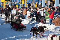 2009 Iditarod Ceremonial Start in Anchorage Alaska March 7 2009