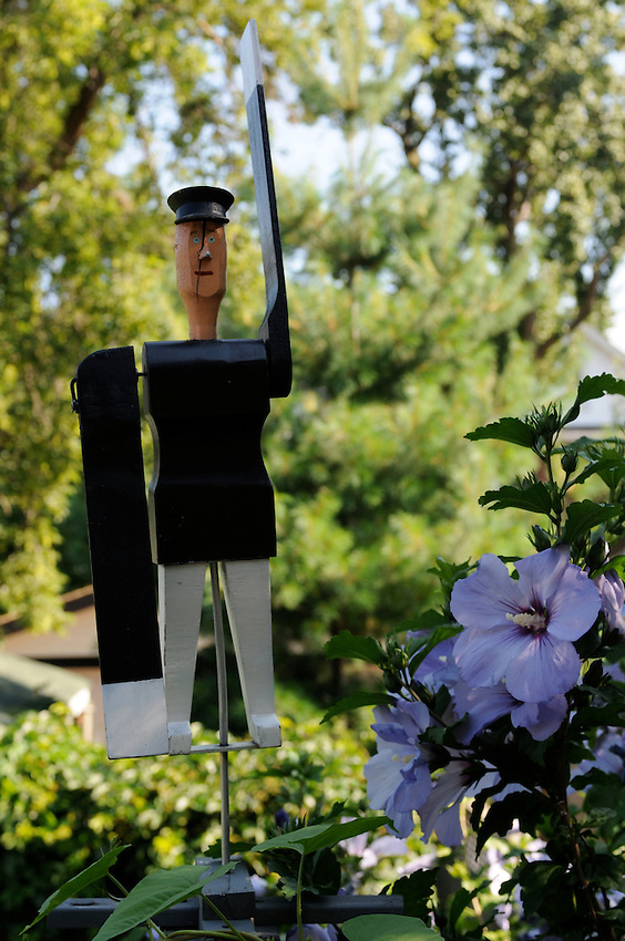 A Swedish Traffic Cop whirly-man garden ornament flanked by Rose of Sharon and beset by morning glory