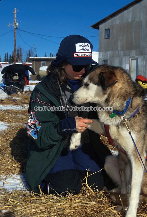 Vet Carol Griffitts examines dogs Nikolai 1998 Iditarod
