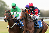 Dramatic Duke (2) ridden by A P McCoy (R) and Jimsun (4) ridden by Tom Messenger lead the field in the Frimstone Standard Open National Hunt Flat Race