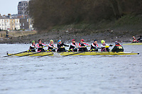 Crew: 209   Mortlake Anglian & Alpha   WMasB-E (WMasD)<br /> <br /> Quintin Head 2019<br /> <br /> To purchase this photo, or to see pricing information for Prints and Downloads, click the blue 'Add to Cart' button at the top-right of the page.