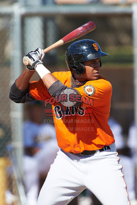 San Francisco Giants minor league outfielder Rafael Rodriguez #45 during an instructional league game against the Oakland Athletics at the Papago Park Baseball Complex on October 17, 2012 in Phoenix, Arizona. (Mike Janes/Four Seam Images)